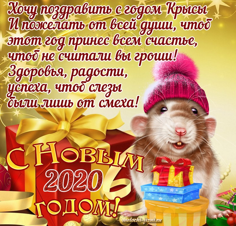 Поздравления с первым днем нового года крысы