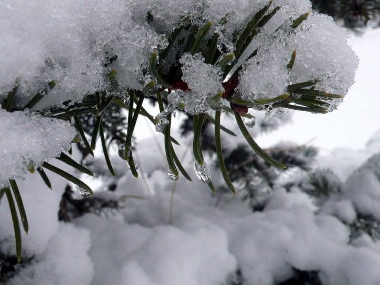 «Когда наступит зима?»: синоптики дали предварительный прогноз на январь 2020 года