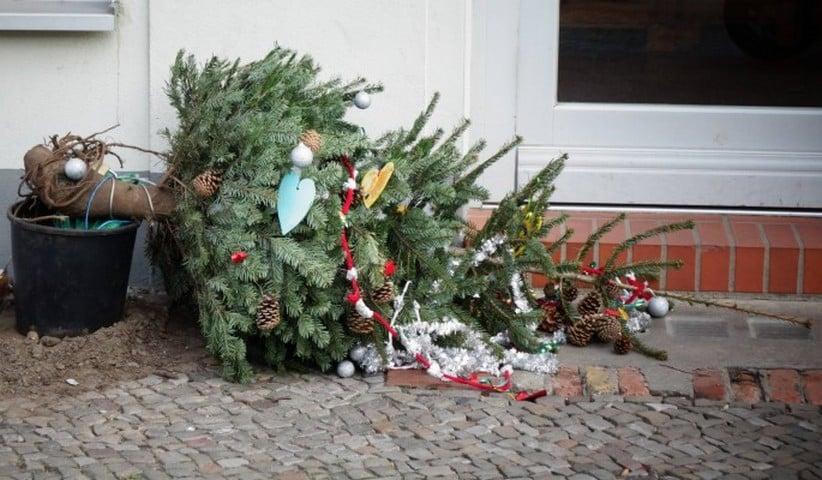 Когда убирать новогоднюю елку, согласно приметам