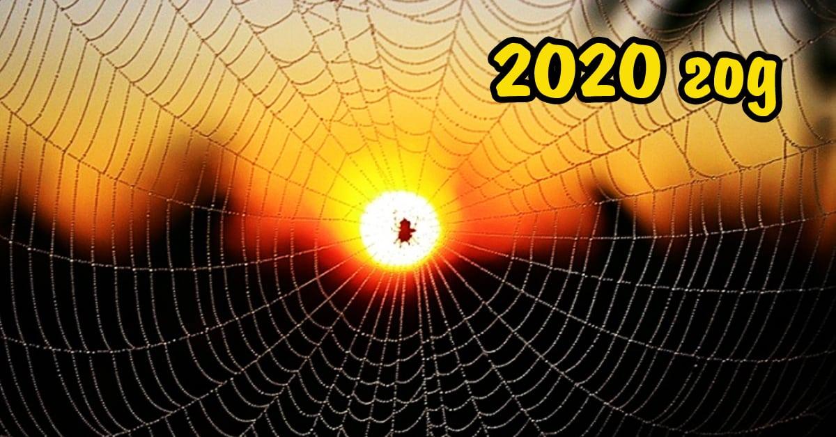 2020 год по славянскому календарю: под чьим покровительством будет, когда начинается