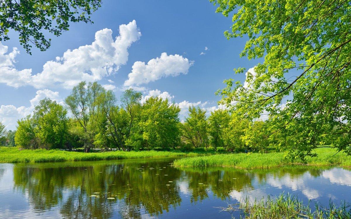 Погода весной и летом 2020 в России: прогноз от синоптиков на весну-лето 2020