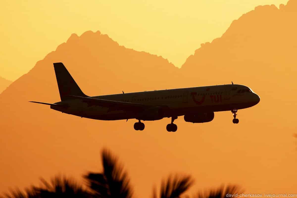 Отдых в Египте для россиян в 2020 году: разрешен или нет, последние новости о возобновлении полетов из Москвы