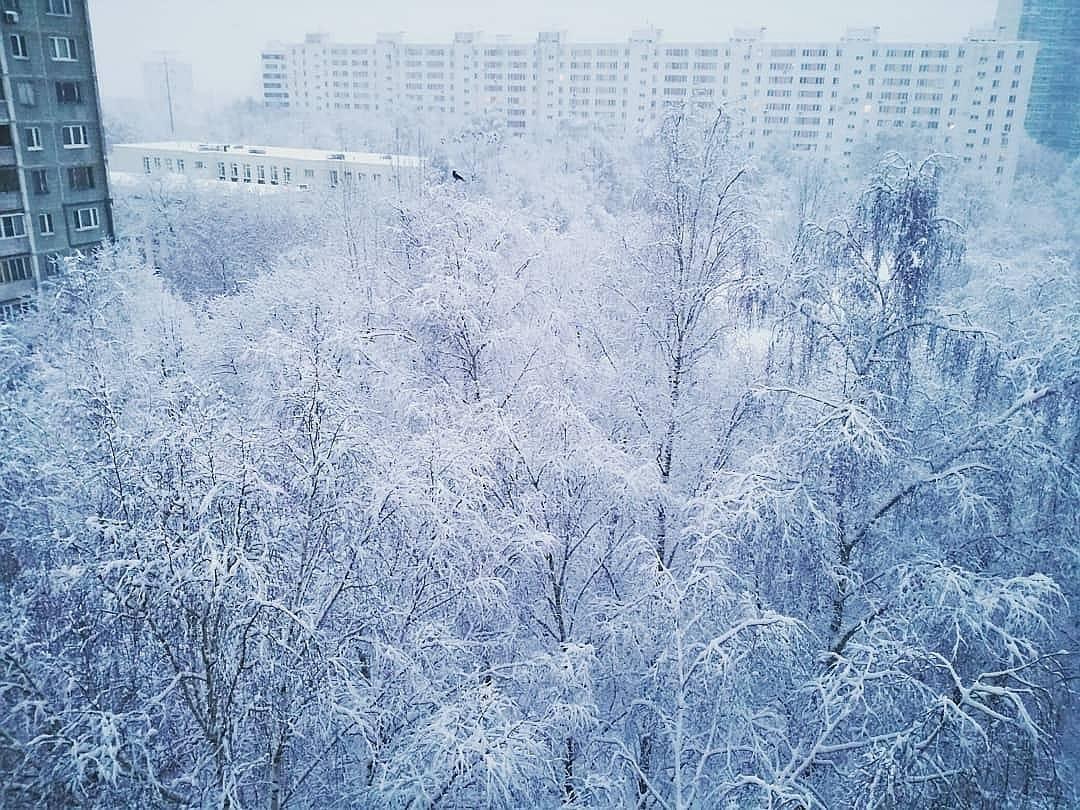 Снег украсит улицы Москвы на следующей неделе