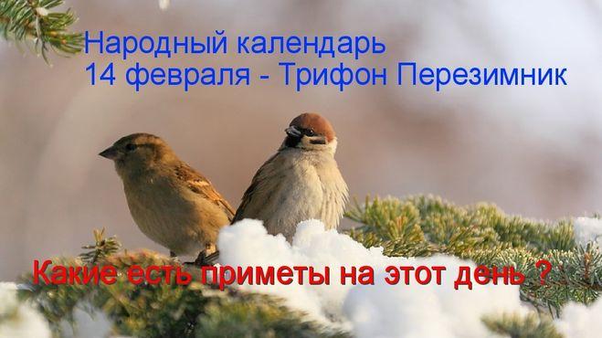 Какой церковный праздник сегодня 14 февраля 2020 чтят православные: Трифонов день отмечают 14.02.2020