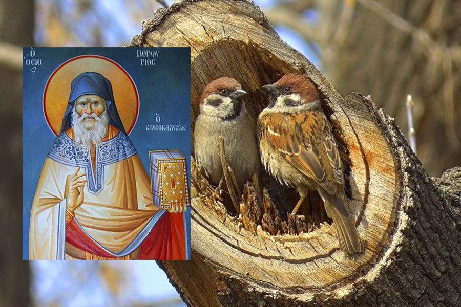 Какой церковный праздник сегодня 11 марта 2021 чтят православные: Порфирий Поздний отмечают 11.03.2021