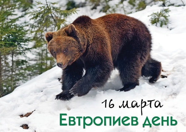 Какой церковный праздник сегодня 16 марта 2021 чтят православные: Евтропиев день отмечают 16.03.2021