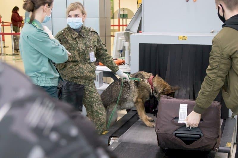 Открытие границ России с другими странами: когда разрешат пересекать границу России, какие страны уже открыты или откроются в ближайшее время
