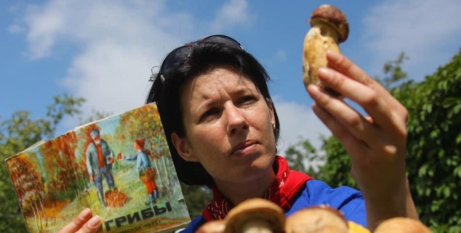 В России могут ужесточить штрафы за сбор редких грибов