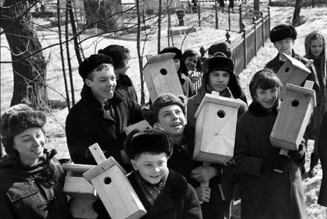 Чем отличаются друг от друга современные и советские подростки