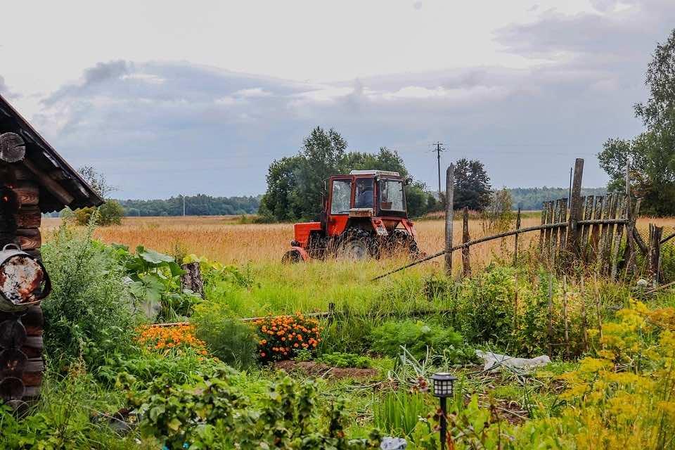 Многодетные семьи Краснодарского края смогут получить земли по упрощённой процедуре
