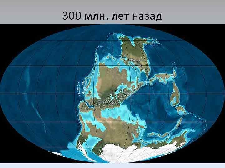 Что было на месте России миллионы лет назад: на дне древнего моря