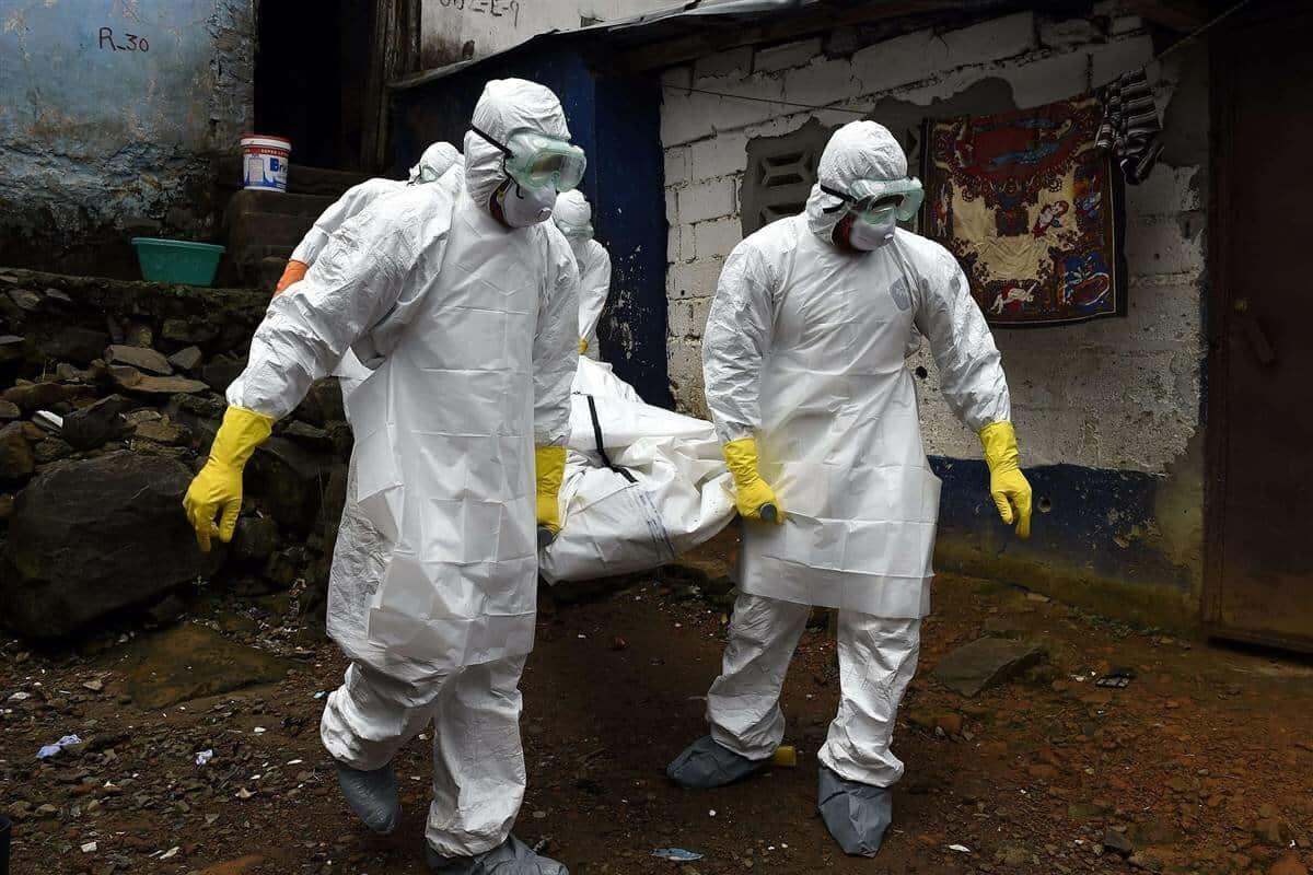 Слухи что от коронавируса могут умереть до 80% населения планеты, появились в СМИ