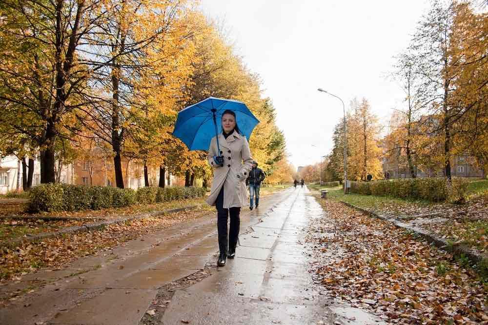 Долгосрочный прогноз погоды на осень 2020 года для России