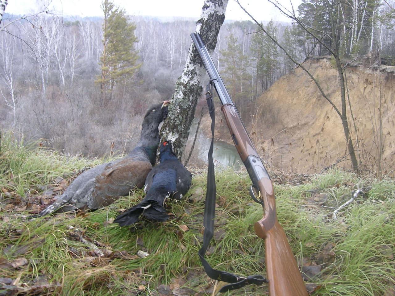 В 2021 году вступят в силу новые правила охоты в России