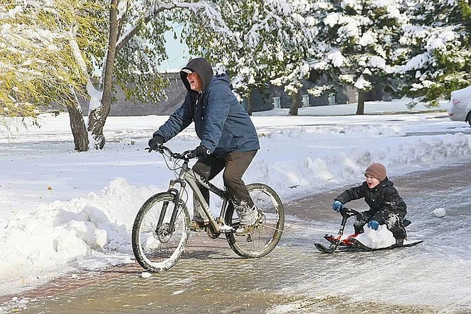 Зима снова будет тёплой: прогноз на зиму дали в Гидрометцентре