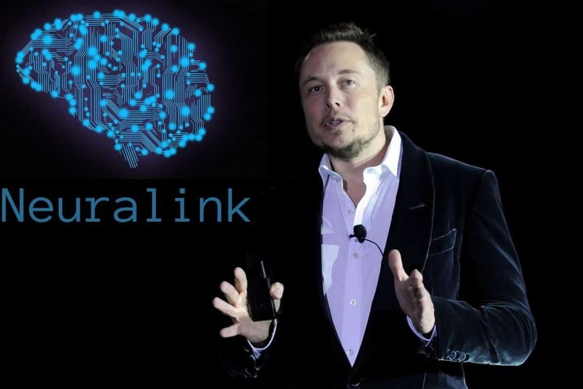 Специальный чип смог вживить в мозг свиньи Илон Маск