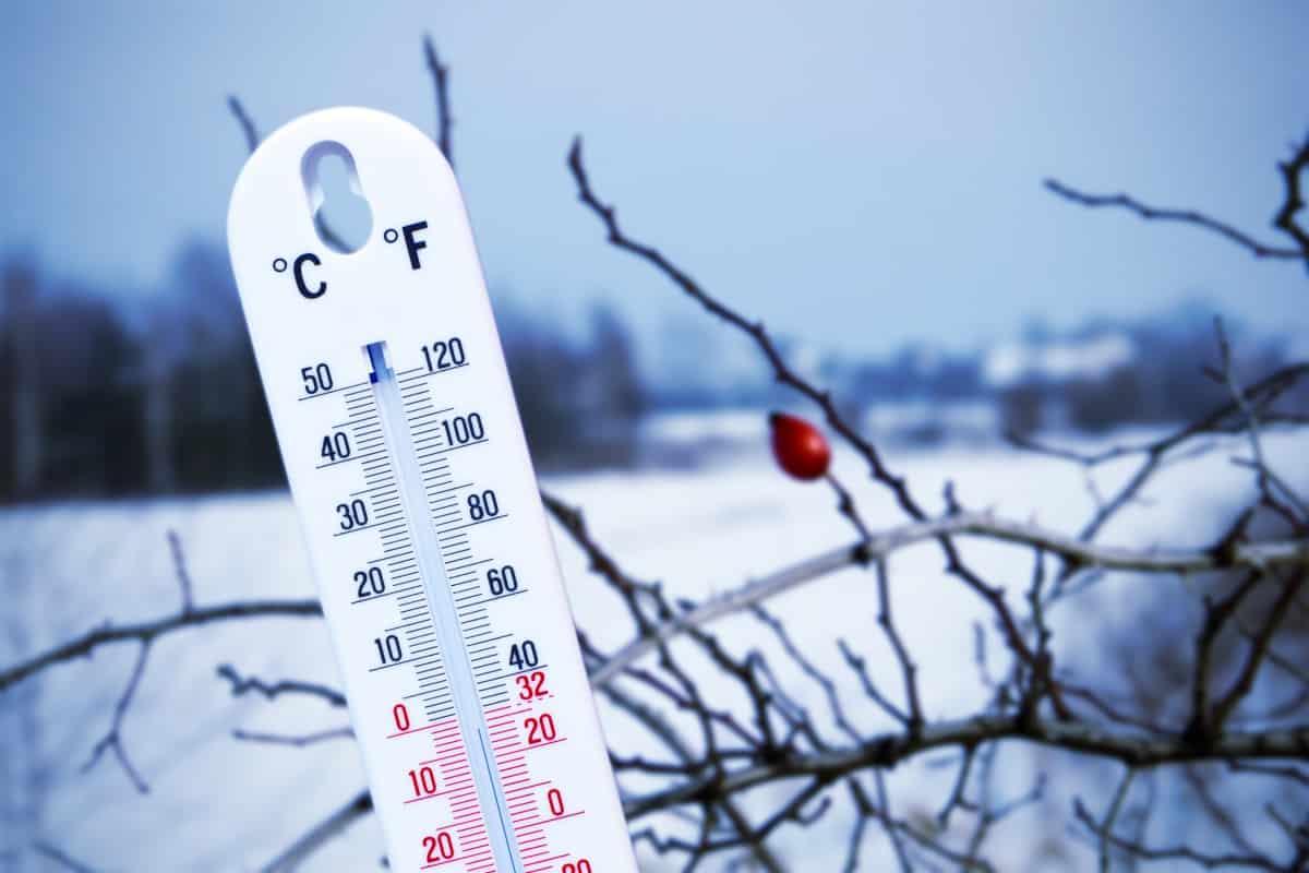 В Гидрометцентре считают прогноз о суровой зиме преждевременным