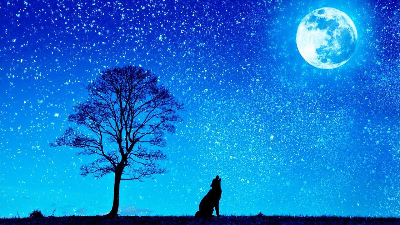 Что означает появление на небе Голубой Луны 31 октября 2020 года
