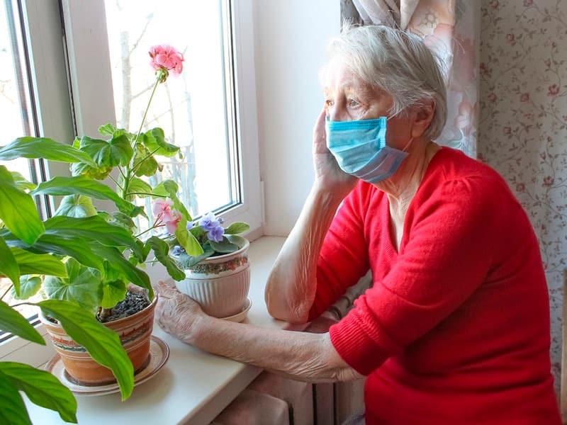 Социальные карты пенсионеров Подмосковья заблокировали с 11 ноября