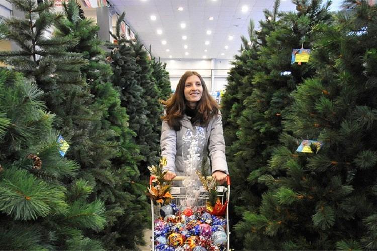 Как правильно выбирать елку к Новому году рассказали в Роспотребнадзоре