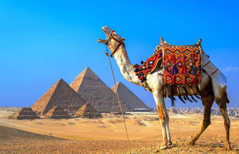 Возможность открытия Египта для россиян в 2021 году прокомментировал российский посол