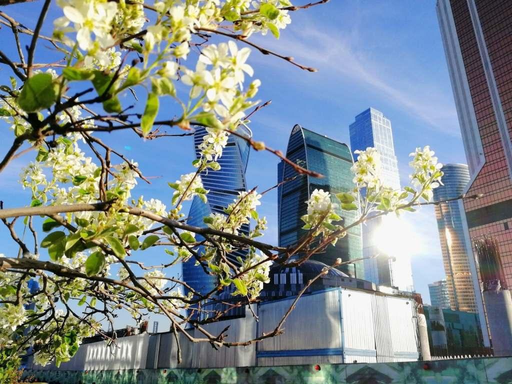 Какой будет весна в России рассказали синоптики
