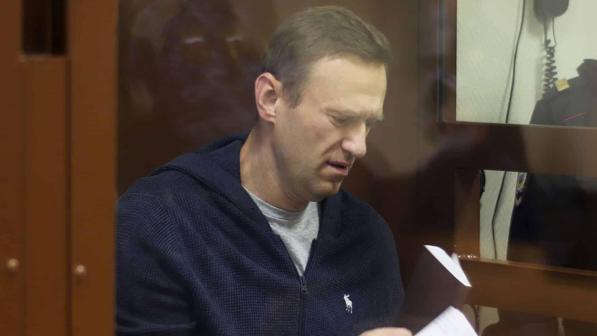 Шапито. Часть вторая. Навальный: котами забита вся камера. Присылайте и других животных...
