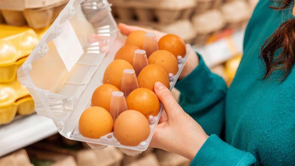О снижении цен на куриное мясо и яйца рассказали в союзе птицеводов